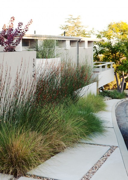 """modern garden"", ""caliofrnia landscape"", ""california garden"", ""los angeles garden"", ""place landscape"", place design"", ""victoria pakshong"", ""sustainable garden"", ""california native garden"", ""drought tolerant garden"", ""quincy jones house"", ""michael wells photography"""