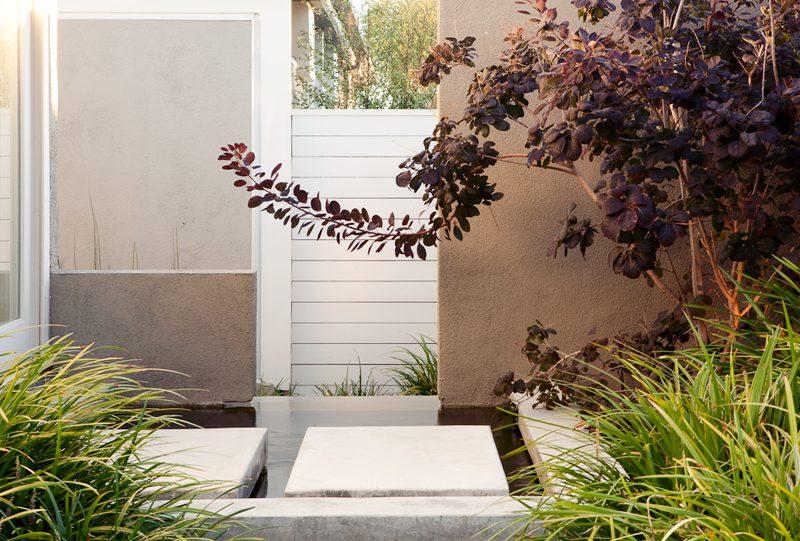 """""""modern garden"""", """"caliofrnia landscape"""", """"california garden"""", """"los angeles garden"""", """"place landscape"""", place design"""", """"victoria pakshong"""", """"sustainable garden"""", """"california native garden"""", """"drought tolerant garden"""", """"quincy jones house"""", """"michael wells photography"""""""