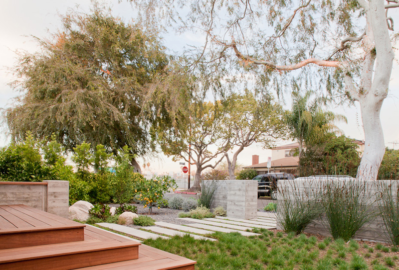 """urban orchard"", ""modern garden"", ""caliofrnia landscape"", ""california garden"", ""los angeles garden"", ""place landscape"", place design"", ""victoria pakshong"", ""sustainable garden"", ""california native garden"", ""drought tolerant garden"", ""michael wells photography"""