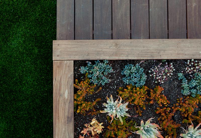"""""""caliofrnia landscape"""", """"california garden"""", """"los angeles garden"""", """"place landscape"""", place design"""", """"victoria pakshong"""", """"sustainable garden"""", """"california native garden"""", """"drought tolerant garden"""", """"rooftop garden"""", """"rooftop deck"""", """"succulents"""", """"succulent garden"""""""